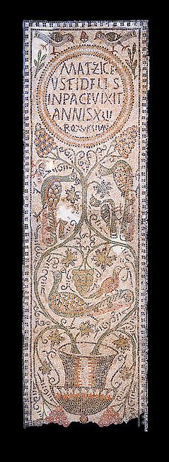 The Christian memorial funerary mosaic of Matziceus, a Libyan, with the inscription reading: &lsquo;the faithful Matziceus lived in peace for 42 years, rested (died) on the fifteenth of the calends of June&rsquo;.<br /> <br /> The panel is decorated with vines which grow out of a cantharus, a Greek style drinking cup, which represents the fountain of life.<br /> <br /> 5th century Eastern Byzantine Roman mosaic from the Parish church of Demna, left AisleBardo Museum, Tunis, Tunisia. Black background