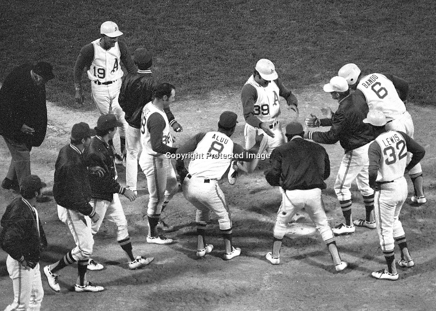 Oakland Athletics greet Frank Fernandez at home after hitting game winning HR in the 9th inning. against the Chicago White Sox. (1970 photo/Ron Riesterer)