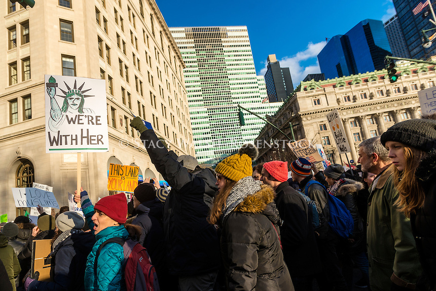 New York, USA - 29 January 2017 - March & Rally: We Will End the Refugee & Muslim Ban. Thousands of New Yorkers rallied in Battery Park for a march to Foley Square to protest president trump's travel ban against five predominaely Muslim nations. ©Stacy Walsh Rosenstock/Alamy Live News