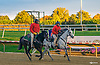 Lance & Colby during the the final race of the 2015 meet at Delaware Park on 10/17/15<br /> It sure got dark for the last race