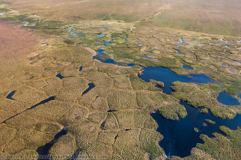 Aerial of polygons on the tundra of the Arctic north slope of Alaska, National Petroleum Reserve, Alaska.