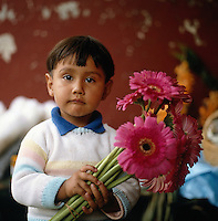 Flower vendors of Mexico City series - young boy with flowers (shasta daisies). Mexico City Distrito Federal Mexico.