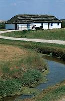 Europe/France/Pays de la Loire/85/Vendée/Marais breton-vendéen/Centre du Daviaud/La Barre-de-Monts: Ecomusée vendéen - bourrine, âne et marais