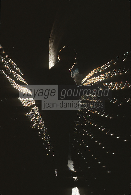 Europe/France/Champagne-Ardenne/51/Marne : Champagne Remueur dans les Caves