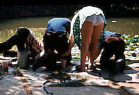 A group of young children bend over to try and catch some fish.