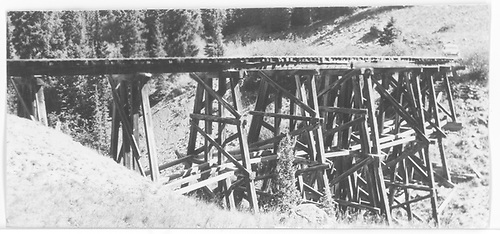 RGS Trestle 51-A from south side.<br /> RGS  Trout Lake, CO  Taken by Maxwell, John W. - 8/17/1960