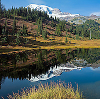 Mount Ranier Reflection