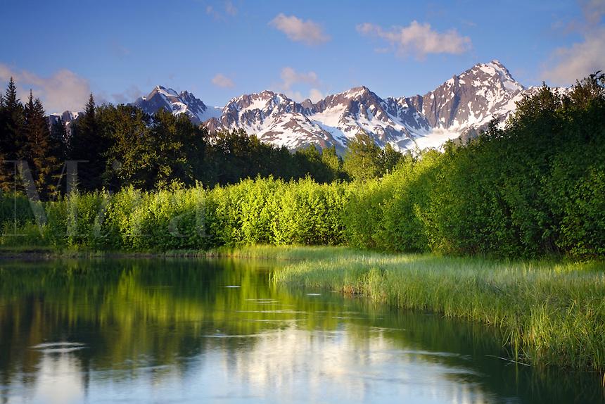 Mt. Alice, Kenai Peninsula, Chugach National Forest, Alaska.