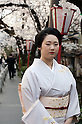 April 10, 2012, Kyoto, Japan - A young woman wearing a traditional Japanese kimono. Hanami is one of the oldest traditions in Japan, which is to admire the cherry blossoms. Last year this tradition was interrupted in the northeast of Japan, because of the big earthquake and tsunami of March 11, 2011.