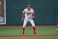 Great Lakes Loons shortstop Leonel Valera (8) during a Midwest League game against the Clinton LumberKings on July 19, 2019 at Dow Diamond in Midland, Michigan.  Clinton defeated Great Lakes 3-2.  (Mike Janes/Four Seam Images)