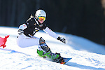 14/12/2013, Carezza - FIS Snowboard World Cup <br /> Ester Ledecka competes during the Parallel Slalom event of the FIS Snowboard World Cup  on 14/12/2013 in Carezza, Italy.<br /> <br /> &copy; Pierre Teyssot<br /> <br /> Ester Ledecka