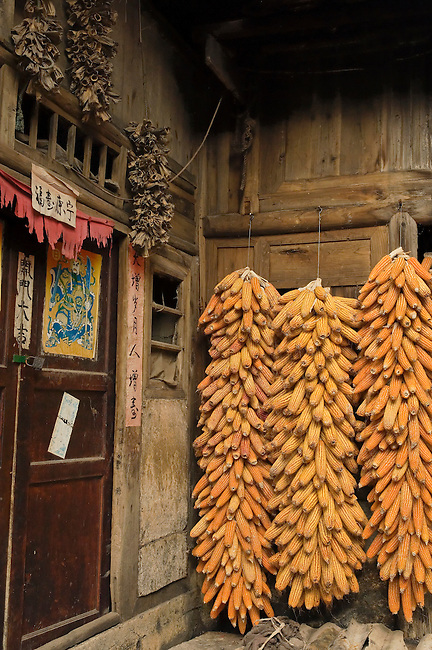 Dried corn offer variation from rice diet, China