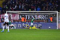19th November 2019, Frankfurt, Germany; 2020 European Championships qualification, Germany versus Northern Ireland;  Goal for 2 1 by Leon Goretzka Germany