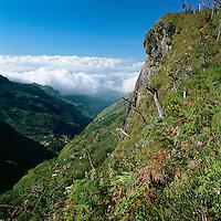 Sri Lanka, near Nuwara Eliya: Horton-Plains-Nationalpark, Cliffs at World's End | Sri Lanka, bei Nuwara Eliya: Horton-Plains-Nationalpark mit dem World's End genannten 1.050 m tiefen Felsabsatz