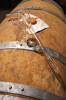 Domaine Le Nouveau Monde. Terrasses de Beziers. Languedoc. Barrel cellar. Drawing a sample with a pipette. ISO standard shape wine tasting glass. France. Europe.