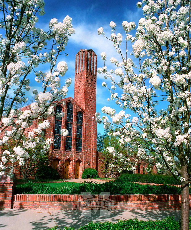 Chapel of Memories with Flowering Pear Trees (photo by Fred Faulk / © Mississippi State University)