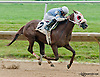 Trick the Queen winning at Delaware Park on 7/8/13