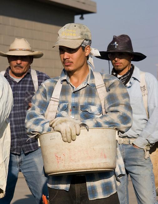 Vineyard workers wait for instructions at Seven Hills Vineyard near Walla Walla, Washington
