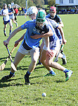 1310/2015   Action from Sixmilebridge where Sr Flannen's College took on Castletroy College in the Harty Cup.  Our photograph shows Castletroys Alan Nicholas and Ross Hayes in action. <br />