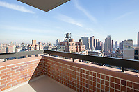 Roof Deck at 45 East 89th Street