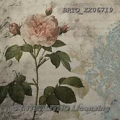 Alfredo, FLOWERS, BLUMEN, FLORES, paintings+++++,BRTOXX06719,#f# ,retro ,everyday