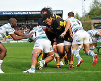 High Wycombe, England. Billy Vunipola of London Wasps charges forward to the try line during the Aviva Premiership match between London Wasps and London Irish at Adams Park on September,15 2012 in High Wycombe, England.