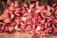 Piles of rhubarb make lovely patterns at the farmer's market.