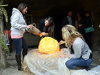 DOYLESTOWN, PA -  OCTOBER 19:  L-R: Kristen Cerniglia, Lilah Thompson and Jenny Thompson, all of Doylestown, Pennsylvania work on a pumpkin carving during Pumpkinfest at the Moravian Tile Works October 19, 2013 in Doylestown, Pennsylvania. (Photo by William Thomas Cain/Cain Images)