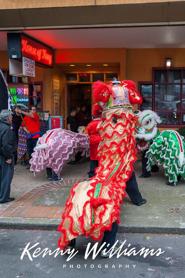 Lion Dance, Chinese Lunar New Year, Chinatown, Seattle, WA, USA.