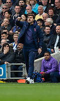 Tottenham Hotspur manager Mauricio Pochettino shouts instructions to his team from the technical area<br /> <br /> Photographer David Horton/CameraSport<br /> <br /> The Premier League - Brighton and Hove Albion v Tottenham Hotspur - Saturday 5th October 2019 - The Amex Stadium - Brighton<br /> <br /> World Copyright © 2019 CameraSport. All rights reserved. 43 Linden Ave. Countesthorpe. Leicester. England. LE8 5PG - Tel: +44 (0) 116 277 4147 - admin@camerasport.com - www.camerasport.com