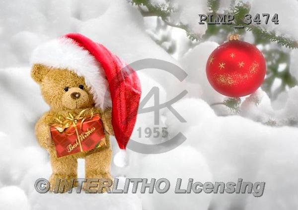 Marek, CHRISTMAS ANIMALS, WEIHNACHTEN TIERE, NAVIDAD ANIMALES, teddies, photos+++++,PLMP3474,#Xa# in snow,outsite,