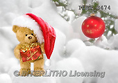 Marek, CHRISTMAS ANIMALS, WEIHNACHTEN TIERE, NAVIDAD ANIMALES, teddies, photos+++++,PLMP3474,#Xa# in snow,outsite,