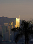Skyline of Hongkongs Central District with Palmtree.