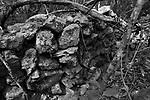 Popula&ccedil;&otilde;es Tradicionais de apanhadores de flores Sempre Vivas situadas na Serra do Espinha&ccedil;o em Diamantina, Minas Gerais.<br /> Popula&ccedil;&otilde;es atingidas pela implanta&ccedil;&atilde;o do Parque Nacional das Sempre Vivas.<br /> S&atilde;o quilombolas reconhecidos pela Funda&ccedil;&atilde;o Palmares e lutam pela demarca&ccedil;&atilde;o territorial e pela recategoriza&ccedil;&atilde;o do Parque Nacional das Sempre Vivas para uma Reserva de Desenvolvimento Sustent&aacute;vel (RDS) que permite a manuten&ccedil;&atilde;o do modo de vida tradicional. Al&eacute;m de apanhar flores praticam agricultura e pecu&aacute;rias tradicionais.<br /> Muro de pedra, cerca de pedra dos antepassados dos quilombolas de Vargem do Inha&iacute;