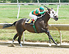 Outmaneuver winning at Delaware Park on 6/30/10