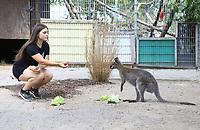 Praktikantin Lisa Lachmann füttert ein Känguruh auf der Keller-Ranch - Weiterstadt 05.08.2018: Tag der offenen Tür auf der Keller-Ranch