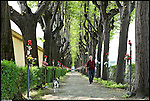 CASELLE - Viale esterno al Cimitero
