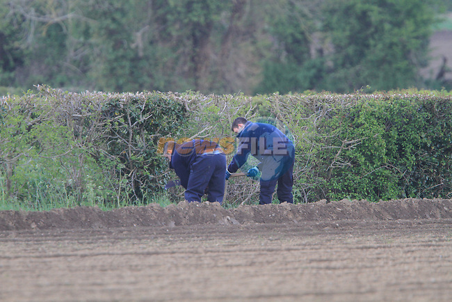 Garda and Garda Technical Bureau members examine the scene of where the remains of a boby was discovered on Thursday Evening outside Duleek in Co Meath..Picture Fran Caffrey/Newsfile.ie