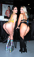 November 04, 2018 Kissa Sins, Alexis Monroe attend eXXXotica 2018 at New Jersey Convention &amp; Exposition Center November 04, 2018 <br /> CAP/MPI/RW<br /> &copy;RW/MPI/Capital Pictures
