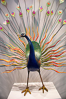 Mexican peacock glass sculpture  in the Museum of Popular Art, Mexico City. The Museo de Arte Popular, which opened in 2006, showcases folk art from all of Mexico's 31 states.