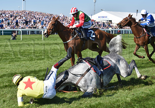 April 8th 2017, Aintree Racecourse, Liverpool, England; Randox Health Grand National Festival Horse racing, Grand National Day; Politologue ridden by Sam Twiston-Davies falls at the final fence of the Doom Bar Maghull Novices Chase allowing San Benedeto ridden by Nick Scholfield to win the race