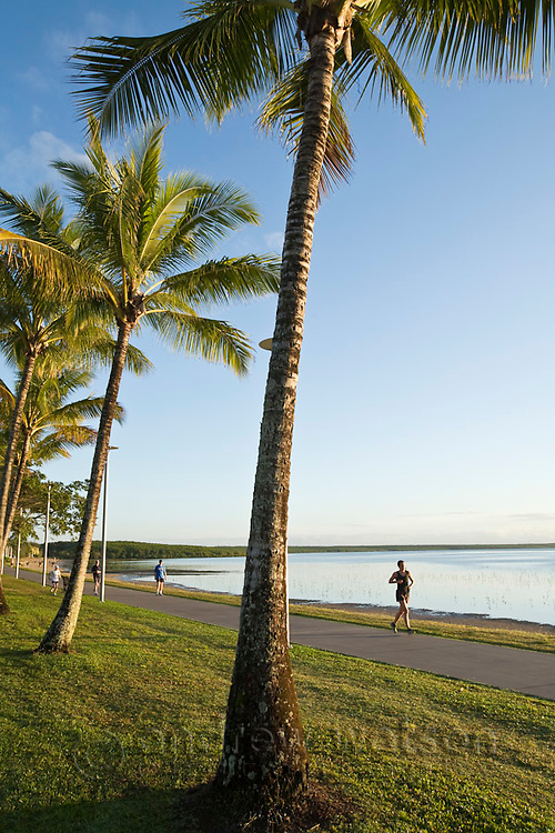 Joggers on Esplanade at dawn.  Cairns, Queensland, Australia