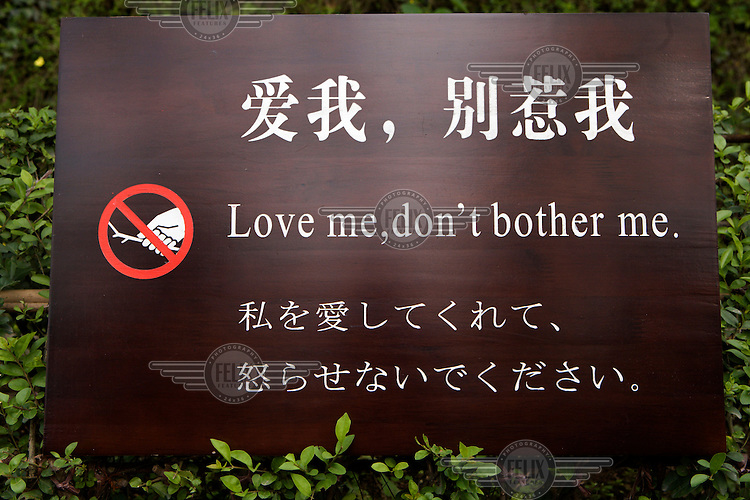 A sign to visitors at the Chengdu Panda Research Centre reading 'Love me, don't bother me.'