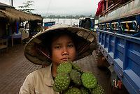 Champassak, Laos, August 20, 2007.On a ferry across the Mekong. Fresh lotus flowers seeds are delicious.
