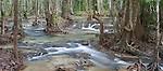 River_through_the_rain_foresrt_in_Krabi_region.psd