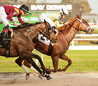 TAMPA, FL - February 10: Flameaway, #2, with Jose Lezcano in the irons, upsets Catholic Boy, #6 to win the Sam F Davis Stakes (Grade III) for trainer Mark Casse. The 3 year old colt by Scat Daddy continues on his Derby Trail campaign at Tampa Bay Downs on February 10, 2018 in Tampa, FL. (Photo by Carson Dennis/Eclipse Sportswire/Getty Images.)