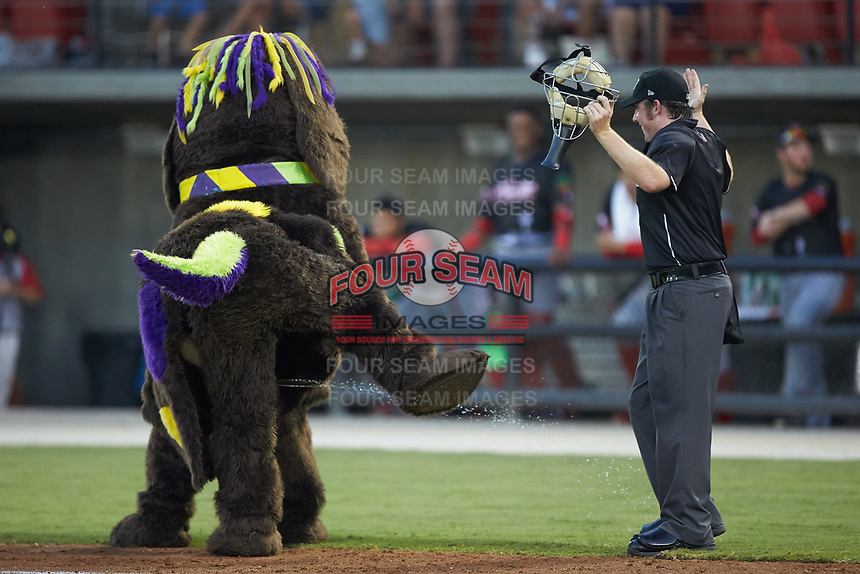 DogZerk! has some fun at the expense of home plate umpire Austin Jones between innings of the 2018 Carolina League All-Star Classic at Five County Stadium on June 19, 2018 in Zebulon, North Carolina. The South All-Stars defeated the North All-Stars 7-6.  (Brian Westerholt/Four Seam Images)
