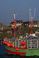 Europe/France/Bretagne/29/Finistère/Le Conquet: Langoustier sur le port