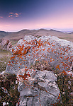Southern Altai Mountains, Mongolia