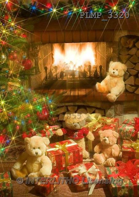 Marek, CHRISTMAS ANIMALS, WEIHNACHTEN TIERE, NAVIDAD ANIMALES, teddies, photos+++++,PLMP3320,#Xa# under Christmas tree,